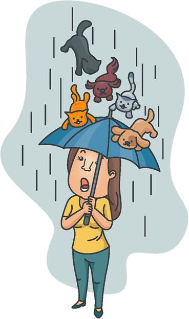 Os animais são trazidos pelos ventos violentos dos tornados
