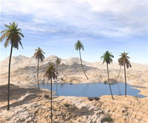Exemplo de oásis  presente em desertos