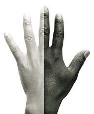 Brancos x Negros: uma disputa sem fim