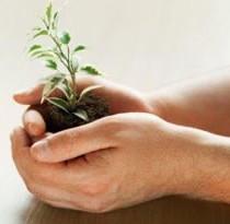 Gestão ambiental : um melhor manejo dos recursos naturais