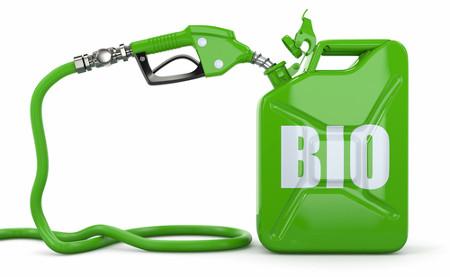 Os biocombustíveis podem abastecer grande parte da frota nacional de carros no futuro