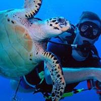 O oceanógrafo explora as relações saudáveis entre o homem e o meio ambiente
