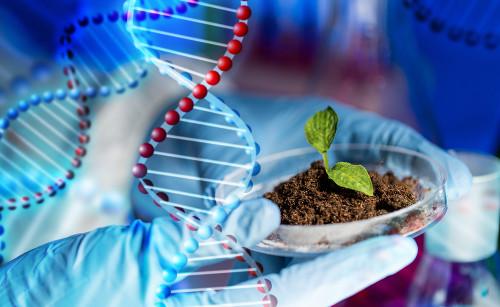 Os cursos de Ciências Biológicas estudam a vida em suas formas e evoluções.