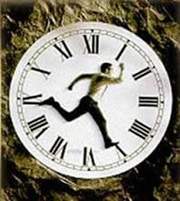 Os tecnológicos são perfeitos para quem não tem tempo a perder.