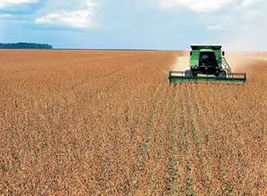 O tecnólogo em agroindústria acompanha todo o trajeto percorrido pela matéria-prima