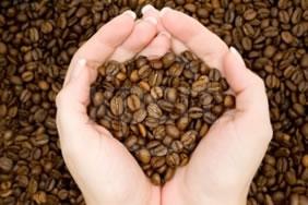 A cultura do café é uma das mais lucrativas do mundo