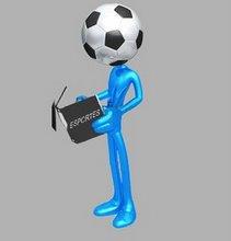Capacitação para o exercício de atividades inerentes a competições esportivas
