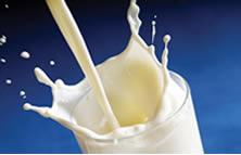 Manter a qualidade o leite e derivados é a função deste tecnólogo