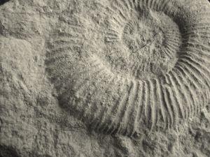 O profissional formado em geologia investiga as alterações provocadas no planeta ao longo dos anos, erosões, glaciações, etc.