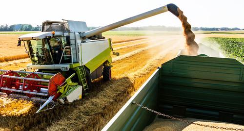 O Técnico em Agronegócios atua em propriedades particulares e também em empresas agrícolas.
