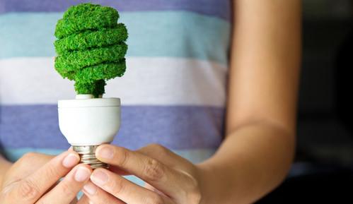 O Técnico em Meio Ambiente deve propor soluções para diminuir os impactos ambientais de empresas e indústrias