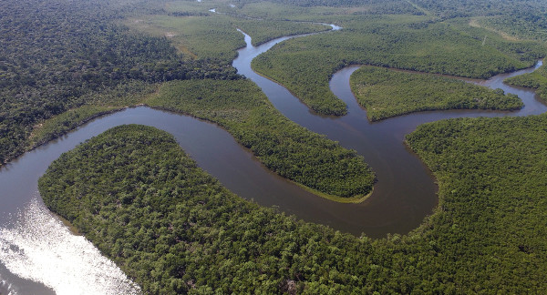 Temer quer extinguir a Reserva Nacional do Cobre e Associados, na Amazônia
