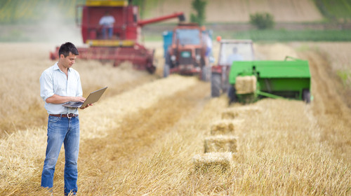 Uma das funções do Técnico em Agroindústria é atuar na administração de empresas rurais.