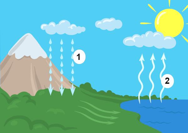 Observe o ciclo da água e indique o que representa os números 1 e 2.