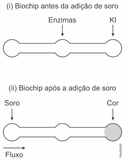 Esquema ilustrativo de funcionamento de biochip para auxiliar no diagnóstico de diabetes — questão Enem 2019