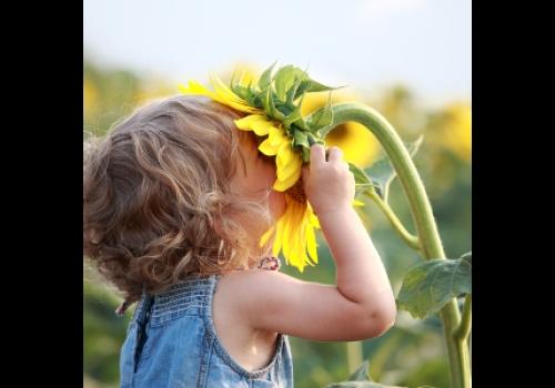 A primavera é considerada a estação mais florida do ano.