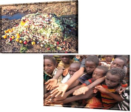 Desigualdade social: vegatais desperdiçados ecrianças entendendosuas mãos no campo de refugiados de Dadaab, Somália, em 15 de agosto de 2011*