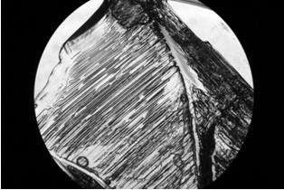 Imagem de um cristal de sal no microscópio