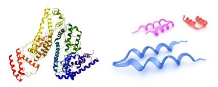 Fenômeno da desnaturação das proteínas