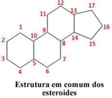 Estrutura dos esteroides