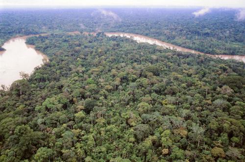 Pelo menos um terço da Floresta Amazônia estaria ameaçada com o aquecimento global, alerta o INPE
