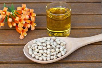 A soja é a principal matéria-prima do biodiesel