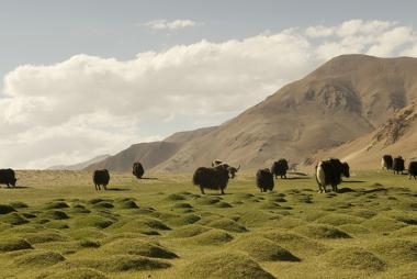 Imagem do planalto tibetano