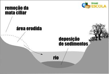 Esquema de uma área assoreada, com sedimentos sendo depositados no fundo do rio