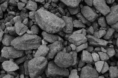 O carvão mineral é obtido a partir da extração mineral