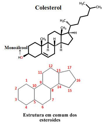 Estrutura do colesterol e parte que é comum a todos os esteroides