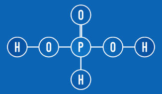 O ácido fosforoso apresenta dois hidrogênios ionizáveis (grupo OH)