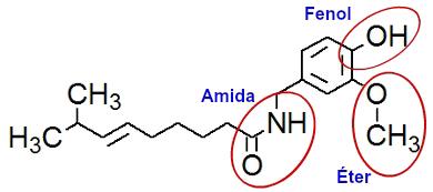 Funções orgânicas em destaque na estrutura da capsaicina