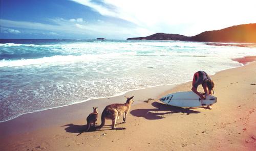 Austrália é repleta de belas paisagens naturais