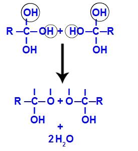 Formação de moléculas de água a partir de duas hidroxilas presentes no poliol formado
