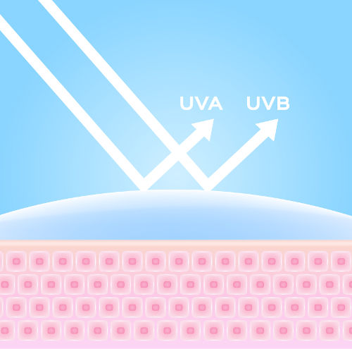 O protetor solar protege a pele da ação dos raios ultravioleta