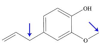 Marcação dos carbonos com hibridização na estrutura do eugenol