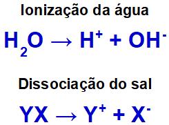Íons provenientes da ionização da água e da dissociação do sal