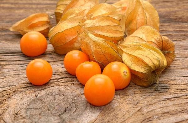 A physalis é rica em proteínas e vitaminas, como a vitamina C e B.