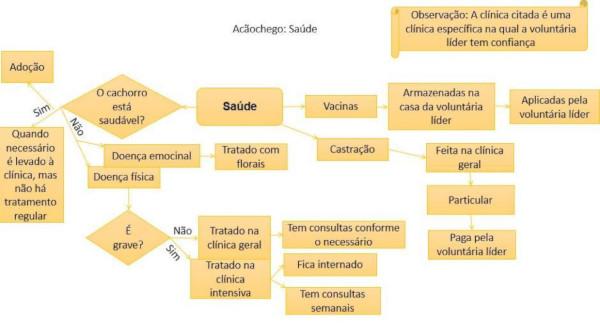 Processo de Cuidados com a Saúde (Acãochego)