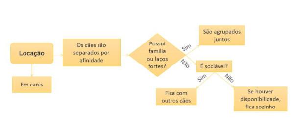 Imagem representando o processo de alocação na OSCIP Acãochego