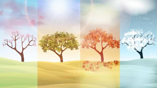 As estações do ano ocorrem em virtude do movimento de translação da Terra, que faz com que a incidência solar seja diferente nos hemisférios.