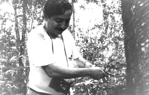 Chico Mendes trabalhou como seringueiro desde a infância, ao lado de seu pai. (Créditos: Wikimedia Commons | Miranda Smith)