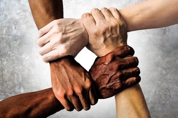 As cotas raciais visam a inserir a população negra na universidade pública e em cargos públicos, criando um sistema de equidade social.