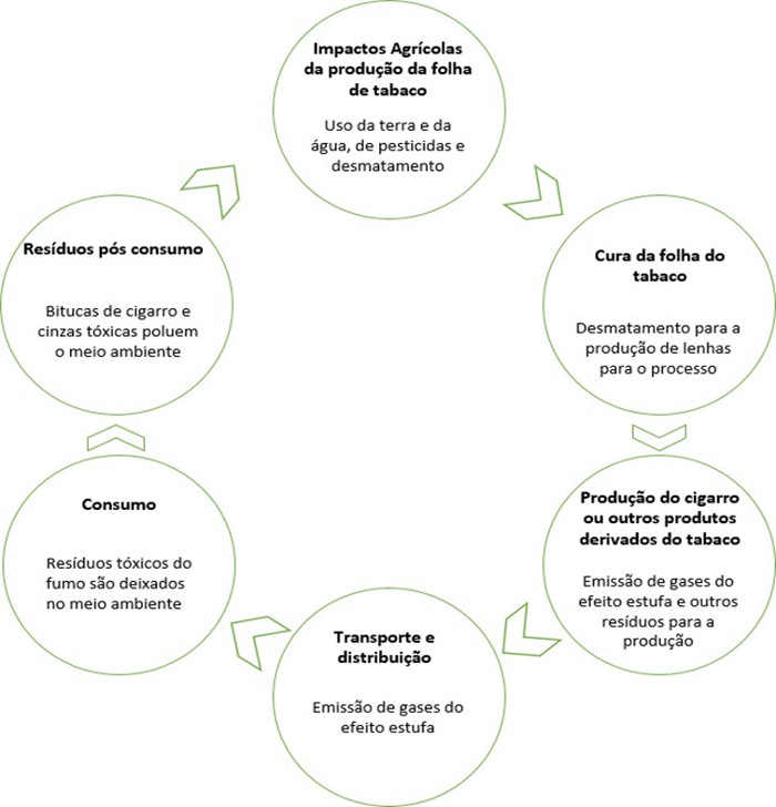 Fluxograma 1 – Ciclo de vida do tabaco – Do cultivo ao resíduo.