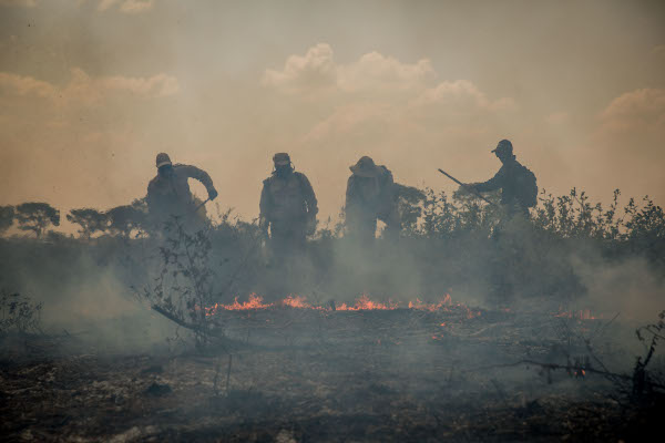 Equipes trabalham para tentar conter incêndios no Pantanal (Crédito: Christiano Antonucci/Secom-MT)